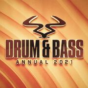 Ram Drum And Bass Annual 2021 by Various