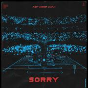 Sorry by Alan Walker feat. ISÁK