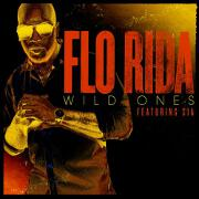 Wild Ones by Flo Rida feat. Sia
