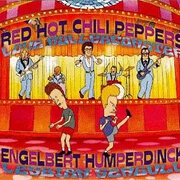 Love Rollercoaster by Red Hot Chili Peppers