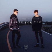 There For You by Martin Garrix And Troye Sivan