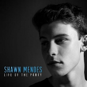 Life Of The Party by Shawn Mendes