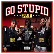 Go Stupid by Polo G, Stunna 4 Vegas And NLE Choppa