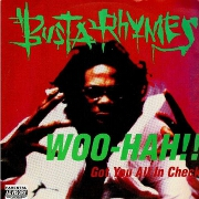 Woo Hah by Busta Rhymes