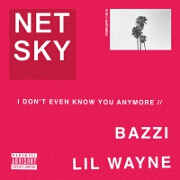 I Don't Even Know You Anymore by Netsky feat. Bazzi And Lil Wayne