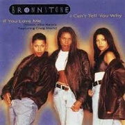 I Can't Tell You Why by Brownstone