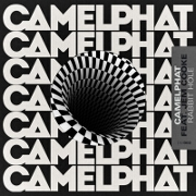 Rabbit Hole by CamelPhat feat. Jem Cooke