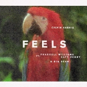 Feels by Calvin Harris feat. Pharrell Williams, Katy Perry And Big Sean