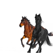 Old Town Road (Remix) by Lil Nas X feat. Billy Ray Cyrus