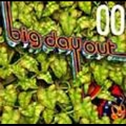 BIG DAY OUT 2000 - THE ALBUM by Various