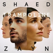 Trampoline by SHAED And ZAYN