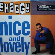 Nice And Lovely by Shaggy