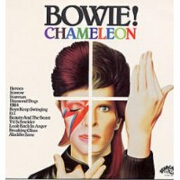 Chameleon by David Bowie