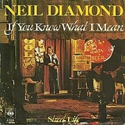 If You Know What I Mean by Neil Diamond