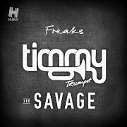 Freaks by Timmy Trumpet And Savage