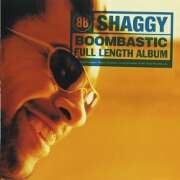 Boombastic by Shaggy
