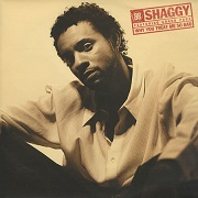Why You Treat Me So Bad by Shaggy