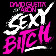 Sexy B**** by David Guetta feat. Akon