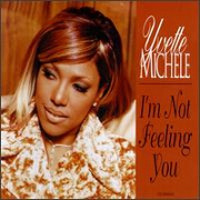 I'm Not Feeling You by Yvette Michelle