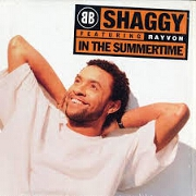 In The Summertime by Shaggy